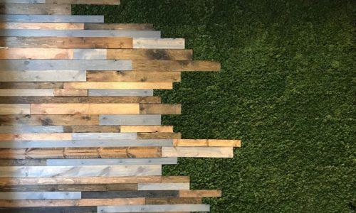 Reindeer-Moss-Wall-w-Wood