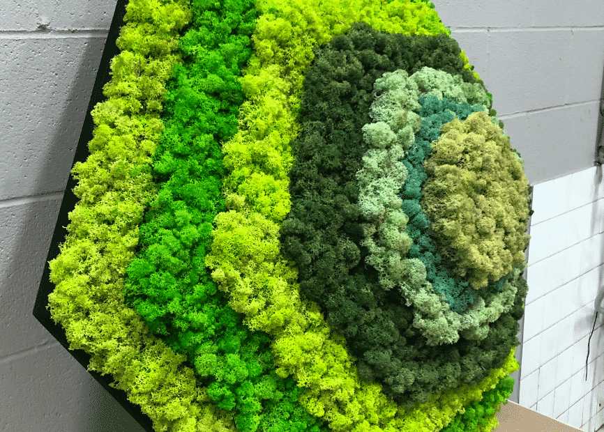 Quiet Earth Moss - 3D Preserved Moss Panels Highlight1