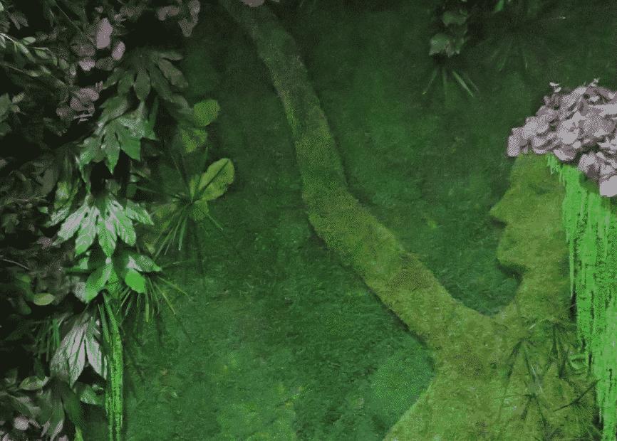 Quiet Earth Moss - 3D Preserved Moss Panels Highlight2