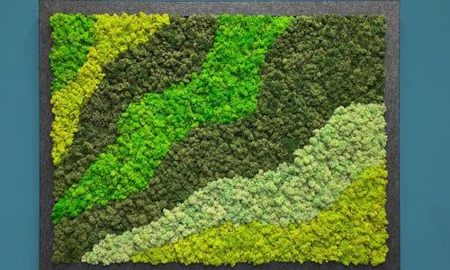Quiet Earth Moss - Framed Moss Panels