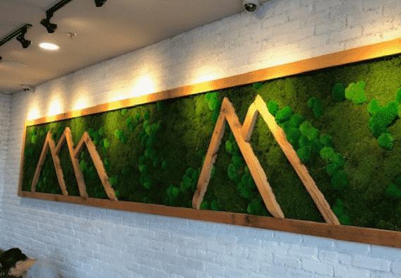 Quiet Earth Moss - Mixed Moss - Gallery 02
