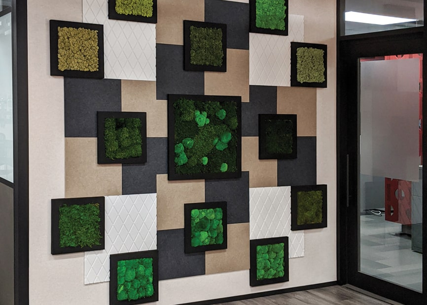 Decorative-Moss-Features