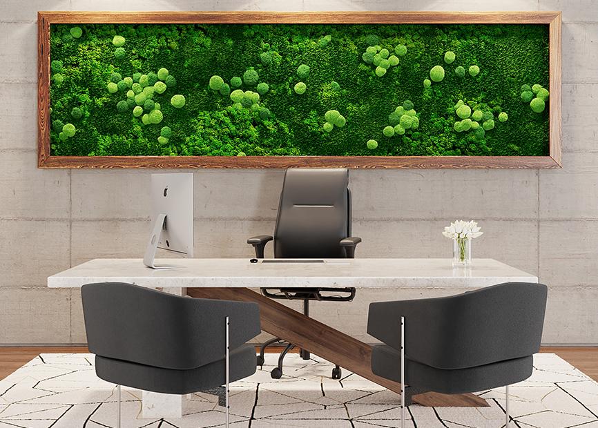 Framed-Moss-Features