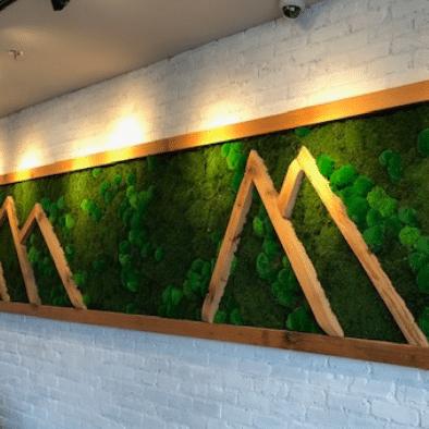 Mixed Moss Wall Art Gallery