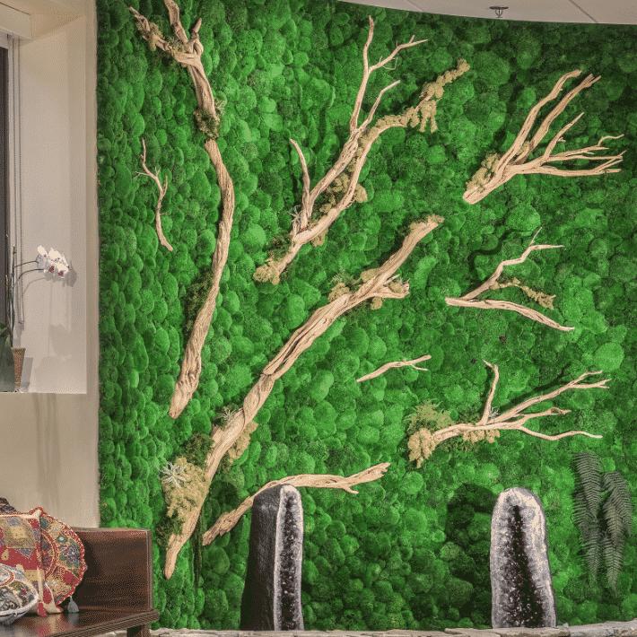 Quiet Earth Moss - Pole Moss - Gallery 03
